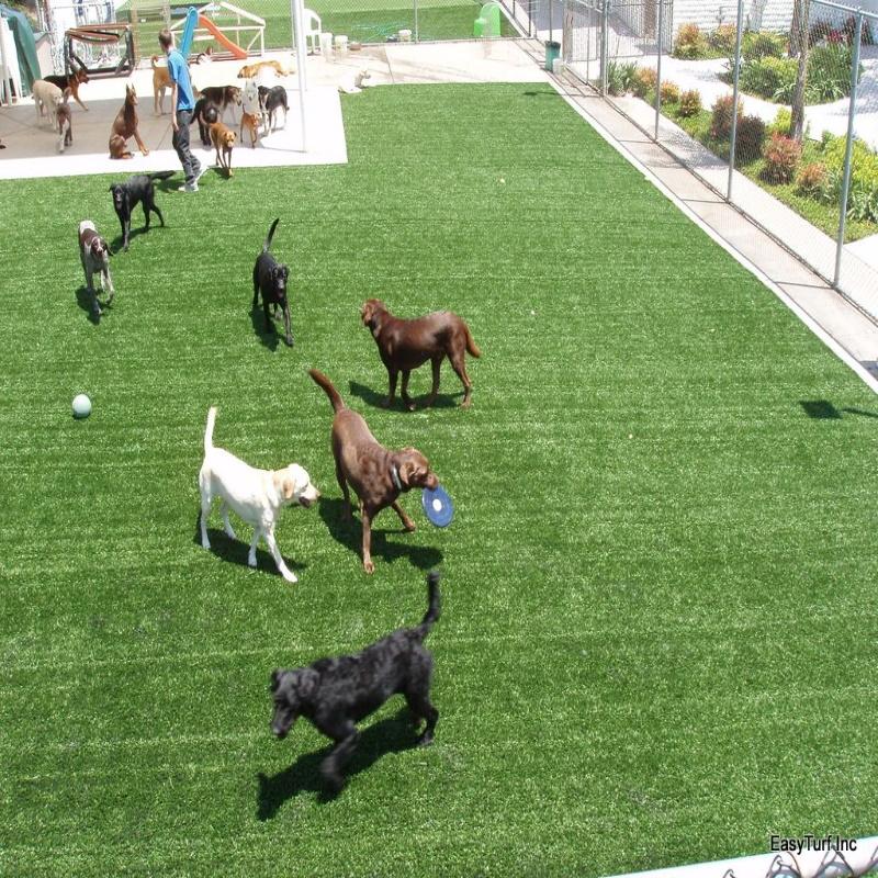 artificial-grass-pic-3.jpg